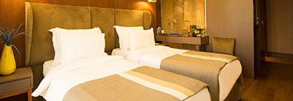 bluewayhotelhistorical-standart-iki-yatakli-oda-423-147